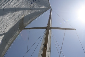 It was 7 long months but the sails once climbed to the top of the mast.